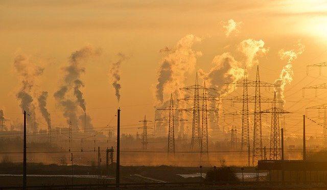 Jak każdy z nas może walczyć z kryzysem klimatycznym?